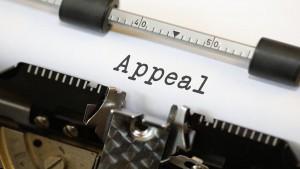 """Cosa il giudice """"non deve esigere"""" dall'appellante nella stesura di un atto di appello."""
