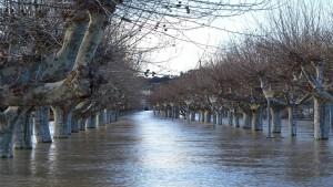 Responsabilità da cose in custodia: l'alluvione non integra il caso fortuito